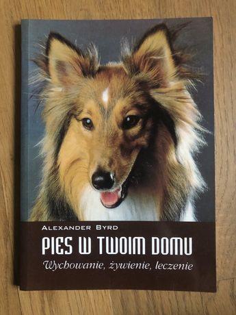 Pies w Twoim domu