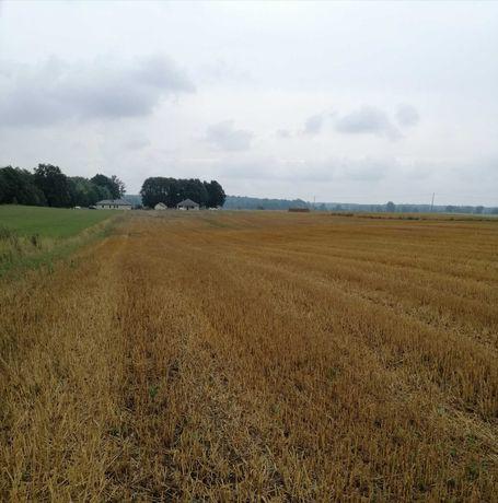 Działka rolna z możliwością zabudowy