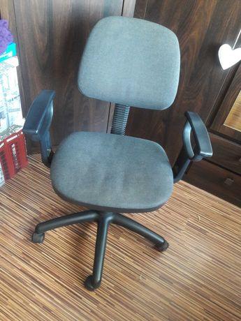 Fotel biurowy na kółkach