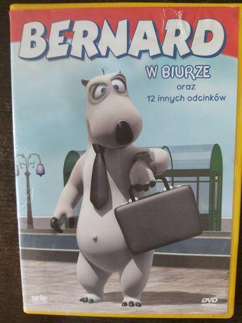 Bernard w biurze DVD I INNE