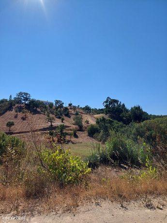 Quinta para renovar com 17 hectares.
