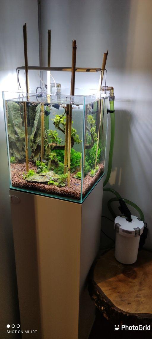 Akwarium 30x30 Aquael z całym wyposażeniem