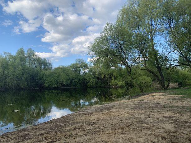 Сказочное место возле красивого озера Кобцы Путровка