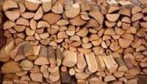 drewno, wiele gatunków, transport gratis!