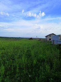 Земельна ділянка Городище-Бармаки 4 200