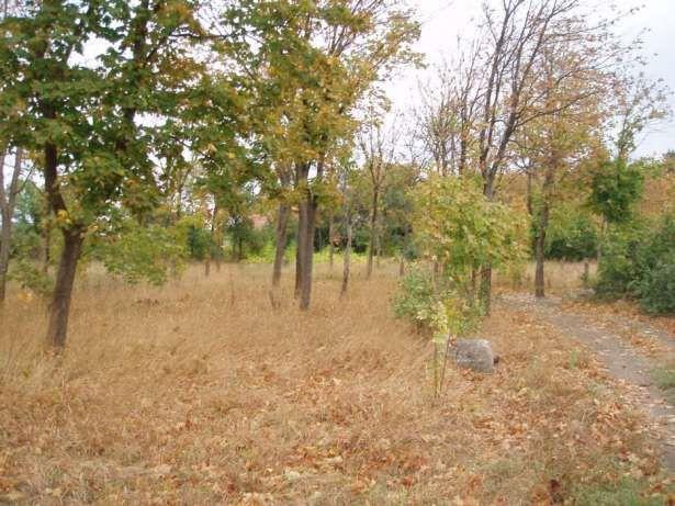 Продаётся земельный участок в Геническе