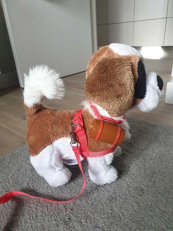 Piesek Interaktywny Bernardyn Samby