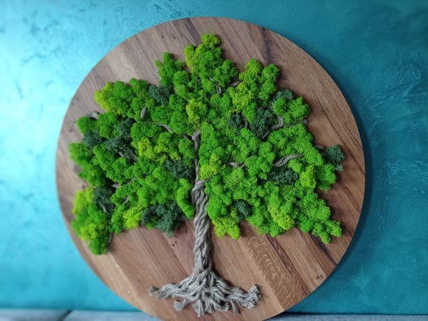 Drzewo obraz z mchu dzień kobiet urodziny podziękowania parapetówka