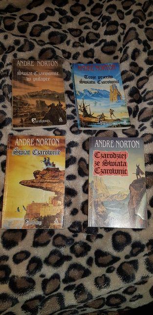 Seria książek o świecie czarownic