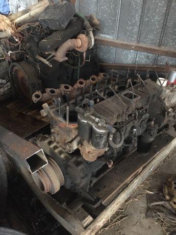 Silnik, blok, głowica do bizona. Autosan,skrzynie biegów