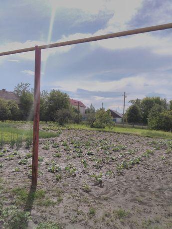 Продам участок в с. Орловщина