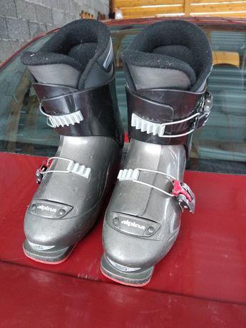 Лижні черевики alpine