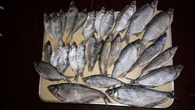 Вяленая рыба (густера, синец, плотва)