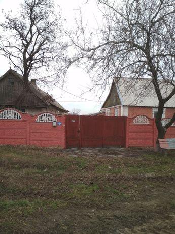 Продаю дом Октябрьское( Шаховое) Возможен торг