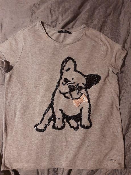 T-shirt bluzka z krótkim rękawem Mohito szara z nadrukiem psa M/L