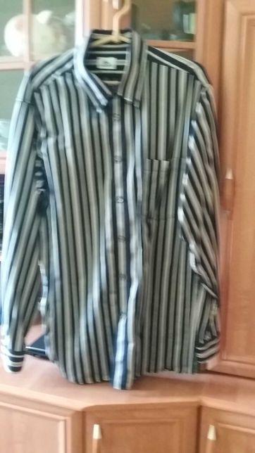 Koszula lacoste 43