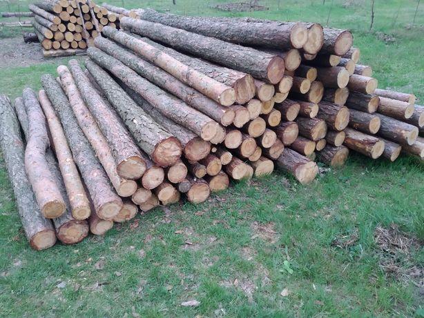Słupki ogrodzeniowe drewniane stemple budowlane żerdzie