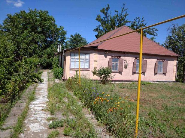 продам дом в Царичанском районе с. Могилев( Лысковка)