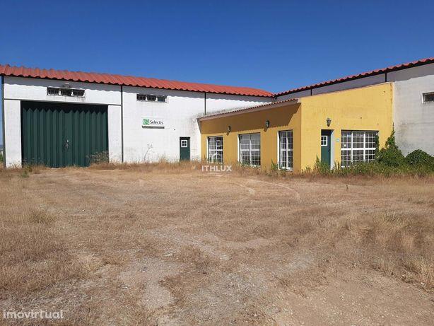 Edifício destinado a Armazém e Comércio – Fronteira- Alentejo