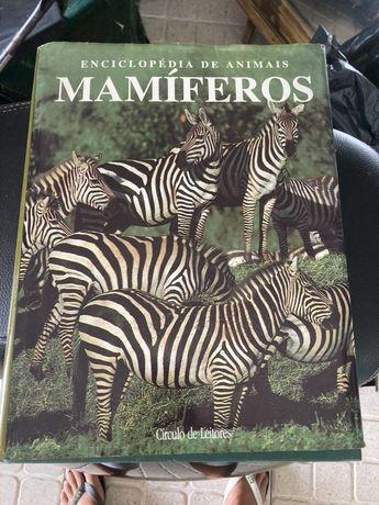 Enciclopédia Animais Mamíferos