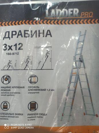 Прокат драбини 3*12сход