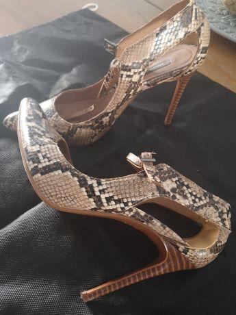 Sapato tigress 37