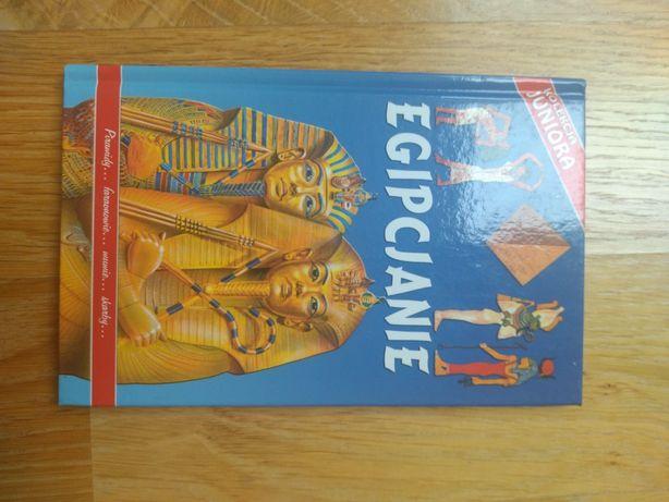 Egipcjanie książka