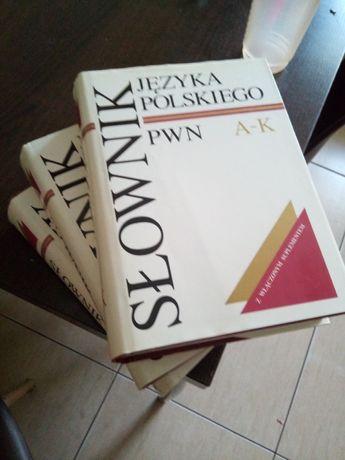 Słownik języka polskiego PWN 3 tomy