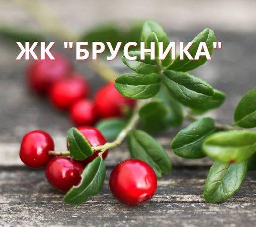 """Счастье купить нельзя, но можно купить """"БРУСНИКУ""""!"""