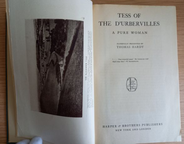 Thomas Hardy, Tess of the d'Urbervilles: a pure woman faithfully prese