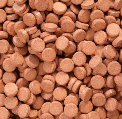 Tabletki - kryl pokarm dla ryb akwariowych- 20 sztuk