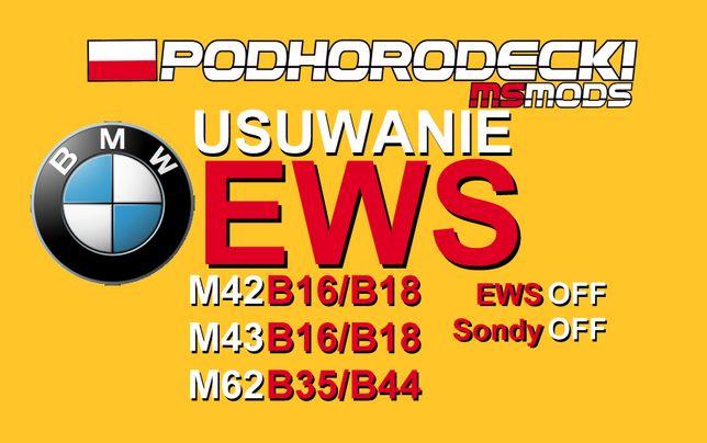 Usuwanie EWS BMW E36 E39 M42 M43 1.6 1.8 & M62 3.5 4.4 immobilisier