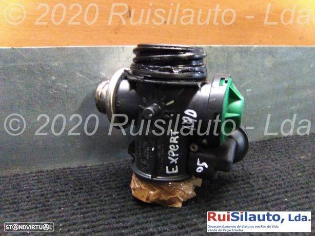 Válvula Egr  Peugeot Expert Caixa 1.9 D 70