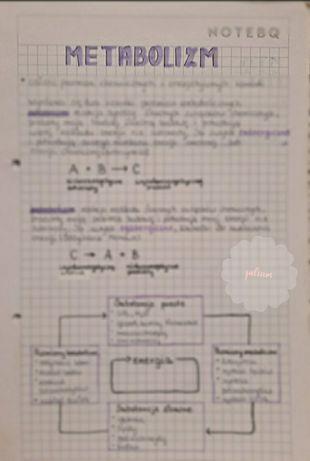 notatki z biologii
