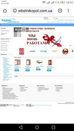 Продам сайт- готовый мебельный бизнес в интернете