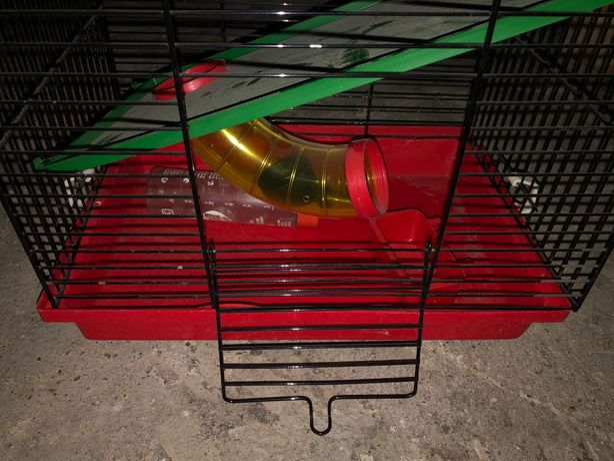 Klatka dla chomika, myszki