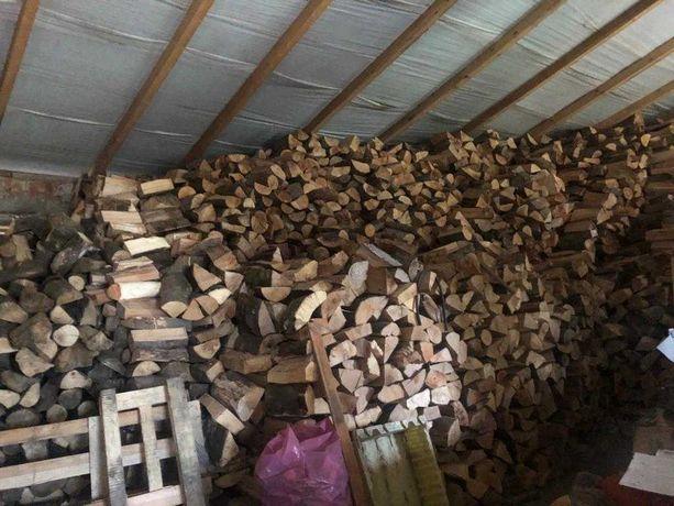 Drewno na opał drzewo do kominka