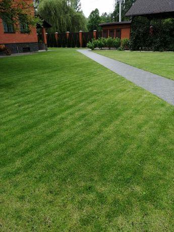 Рулонный/посевной газон. Автополив