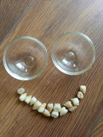 technik dentystyczny - akcesoria