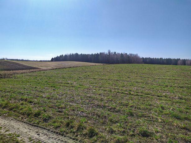 Gospodarstwo rolne z zabudowaniami