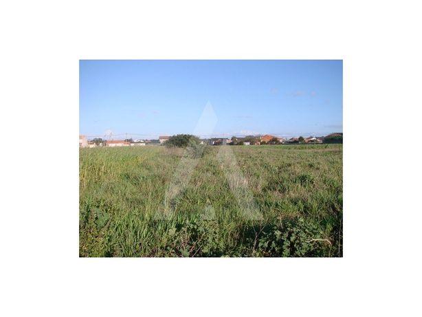 Terreno - Com vistas para Ria