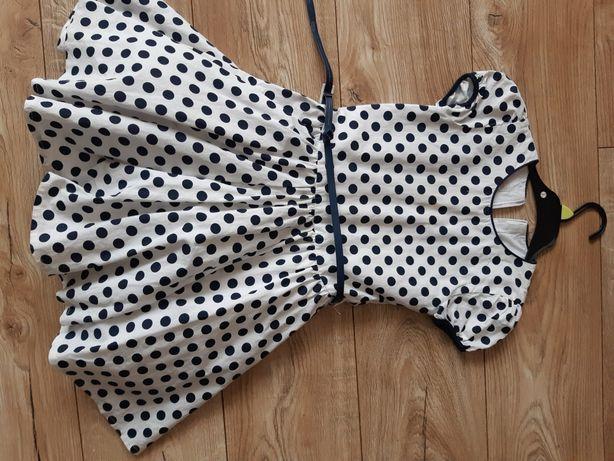 Elegancka sukienka 116