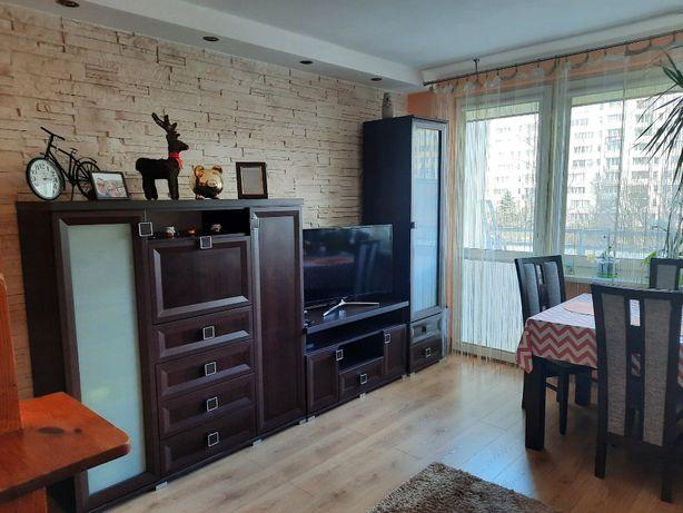 Wynajmę mieszkanie 44 m2 (2 pokoje), metro Wawrzyszew – od zaraz