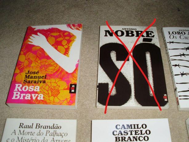 Rosa Brava - Livro de Bolso de José Manuel Saraiva