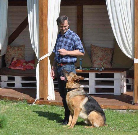 Кінолог з Коломиї,дресирування собак, он-лайн консультації. Кінолог з