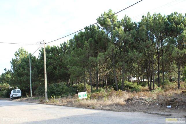Magnifico lote de terreno no Vale da Telha perto de Aljezur