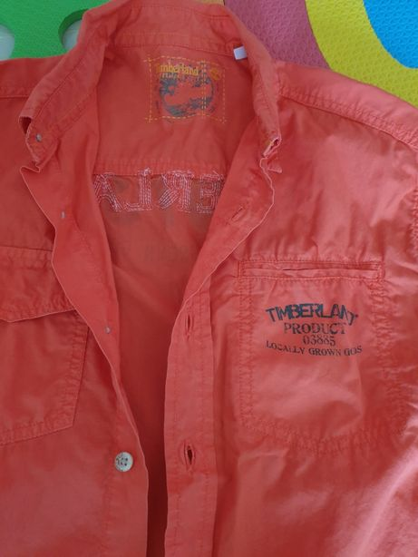 Camisa Timberland crianca