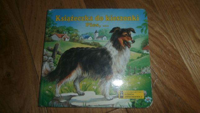 Książeczki o zwierzętach dla najmłodszych