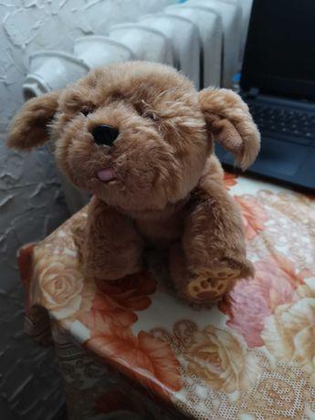 Mój przyjaciel tuluś