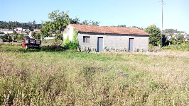 Vende-se terreno agrícola